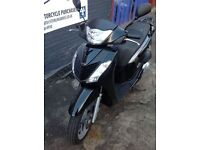 HONDA SH 125 FOR SALE - STERLING BIKES