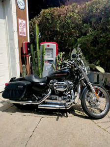 Harley sporster custom