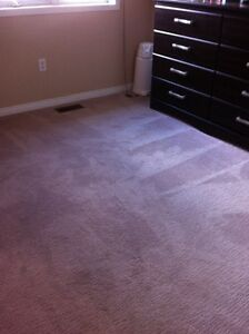 Carpet Steam & Shampoo Cleaning- @ Multiple Locations FREE Quote Oakville / Halton Region Toronto (GTA) image 2