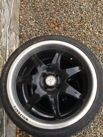 Wolf race alloys
