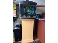 Complete established fish tank inc fish