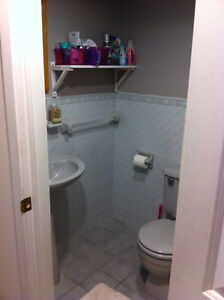 Short Term Lease in Owner Occupied Home - Avail. Jan 1st Kingston Kingston Area image 5