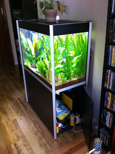 fluval profile 1000 up for grabs brand new 72 gal tank w/stand