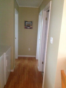 Two bedroom above ground apartment St. John's Newfoundland image 4