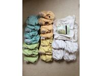 18 reusable 'Pop-in' nappies + extra pop-in shells