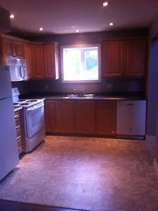 2 bedroom apt for rent in CLARENVILLE
