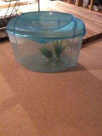 Plastic fish tak