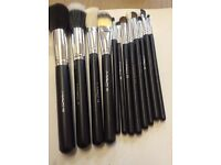 Black and Silver 12pcs brush set with a case