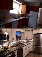 Custom solid wood cabinets and furniture