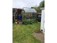 Greenhouse 6x6