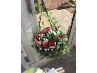 Roses Ready Made Hanging Basket x4