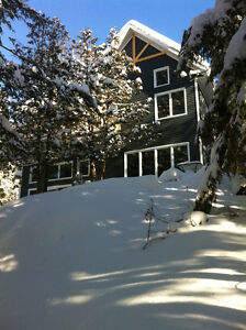 WATERFRONT magnificient contemporary home 25 min from downtown