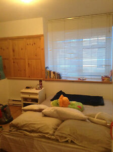 Looking for a roommate -McGill ghetto - fully furnished