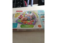 Fisher price musical activity gym