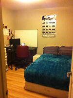 Room Sublet Downtown Ottawa