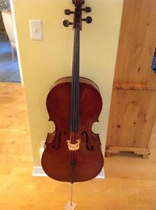Cello 4/4 by Josef Jan Dvorak