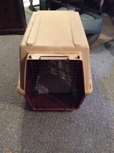 Dog crate Kingston Kingston Area image 1