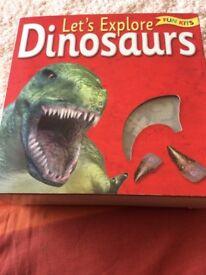 Dinosaur Kit (New)