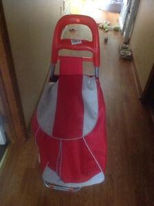 Mobile Shopping Bag/Cart