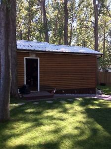 Newly Renovated Cabin For Sale