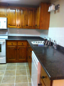 Modern Furnished Lower-Level Apartment In Ancaster