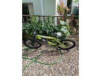Panic Flite BMX Bike