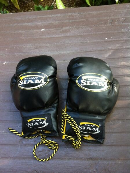 Muay Siam boxing gloves. Size 6. In good condition
