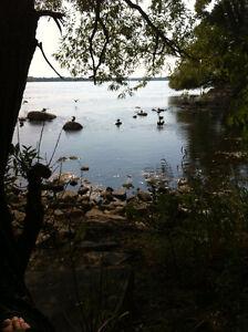 Belle chambre - Lasalle - tranquille - bord de l'eau