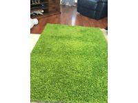 Green shag pile rug 66 x 48 inch
