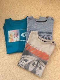 Boys Animal t-shirts age 11-12yrs