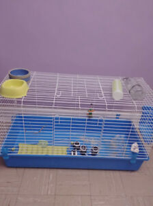 Large rabbit/ guinea pig cage