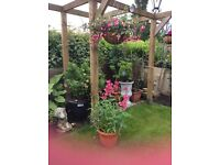 Hanging basket and container