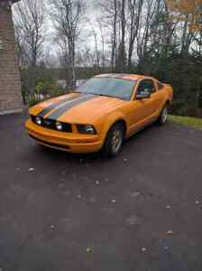 Ford Mustang 2007 Manual LAST CHANCE