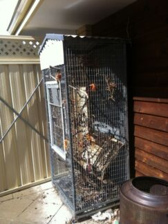 Large cocky cage Warwick Joondalup Area Preview