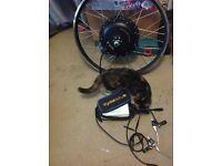 Electric bike conversion kit fast