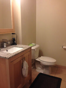 Double Room Lease Takeover - Luxe 2 Kitchener / Waterloo Kitchener Area image 6