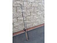 Abu Garcia Spinning 10ft 40-80g Fishing Rod With Abu Size 6000 Spin Reel Salmon Pike Trout Trolling