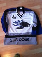 Saint John Sea Dogs jersey