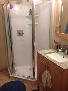 Double Room Lease Takeover - Luxe 2 Kitchener / Waterloo Kitchener Area image 7