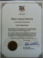 Do you need your carpets completely clean?