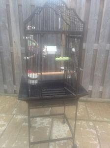 2 Birds Cages for Sale Oakville / Halton Region Toronto (GTA) image 6
