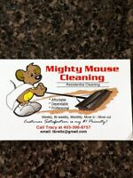 Mighty Mouse Cleaning