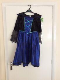 Fancy dress girls age 9/10