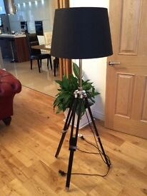 Telescopic lamp