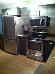 North Regina Fully Furnished Bachelor Studio Condo Jan 1st!