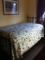 Wrought Iron Antique Single Bed with New Mattress