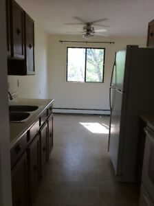 Spacious, Newly Renovated, Reasonable Rent