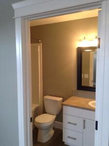 3 Bedroom House for Rent Regina Regina Area image 9