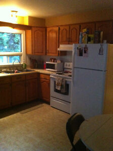 Roommate Wanted for Shared Accommodations