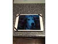 Apple iPad Mini. Wifi & Cellular.
